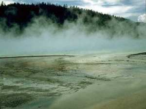 Geyser steam