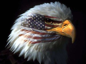 American Eagle and US Flag