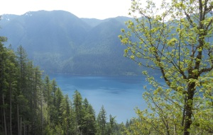 Lake Crescent from Pyramid Peak Trail.